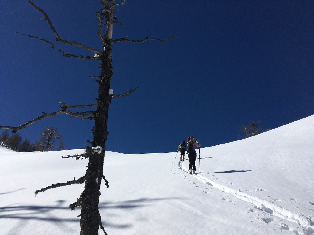Skitour im März auf's Benzeck, Flachau/Flachauwinkl