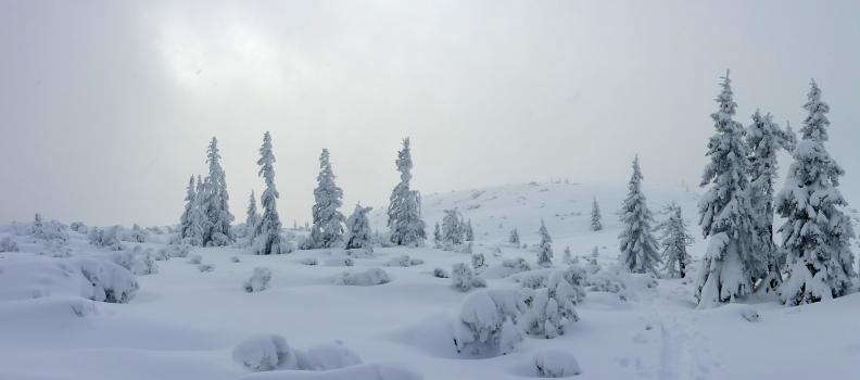 Skitour auf den Gerzkopf vom Knapp-Bauer